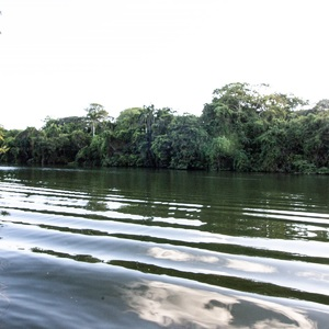 Serene view of river after a tour guide boat passed by.
