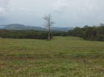 Misty Meadow Farms - Lot 7, one acre parcel - Cayo