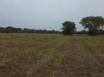 Misty Meadow Farms - Lot 10, five acre parcel - Cayo