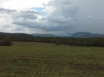 Misty Meadow Farms - Lot 11, five acre parcel - Cayo