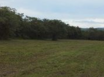 Misty Meadow Farms - Lot 13, five acre parcel - Cayo