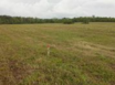 Misty Meadow Farms - Lot 14, five acre parcel - Cayo