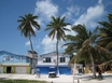 Nightclub For Sale on Caye Caulker Belize.