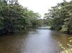 20 Acres of Riverfront Land