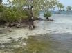 0.4 Acre Island
