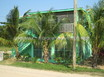 Duplex In Placencia Village