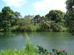 Sittee River Frontage. 17 Acres